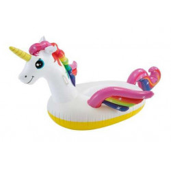 Licorne Intex